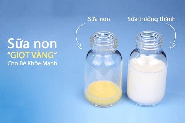 """Sữa non """"giọt vàng"""" cho bé khỏe mạnh"""